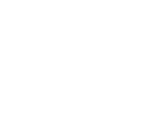 ironing elves logo